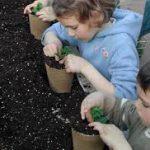 Une image de l'activité Les petits jardiniers à l'écoute la nature organisée par Apprends et Rêve, activités pour enfants et ados à Paris