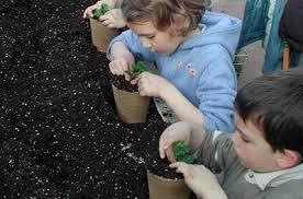 Activité 'Les petits jardiniers à l'écoute la nature' par Apprends et Rêve, activités pour enfants et ados à Paris