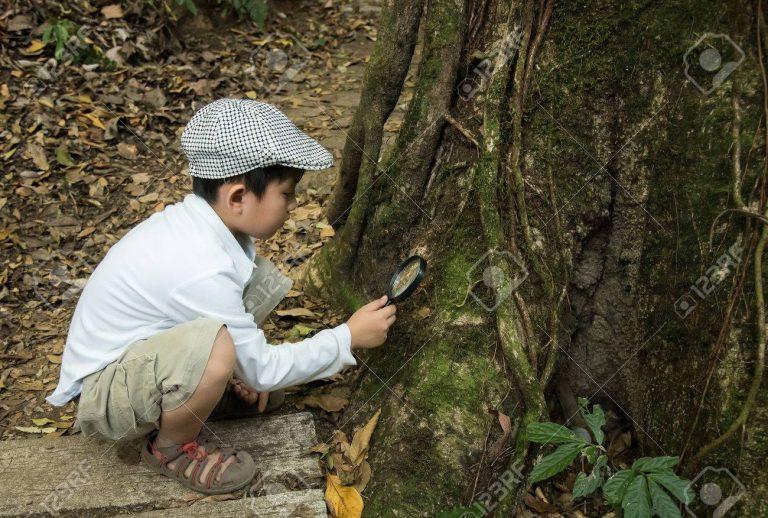 Activité 'À l'écoute de la nature' par Apprends et Rêve, activités pour enfants et ados à Paris