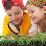 Une image de l'activité Les P'tits Aventuriers découvrent la nature organisée par Apprends et Rêve, activités pour enfants et ados à Paris